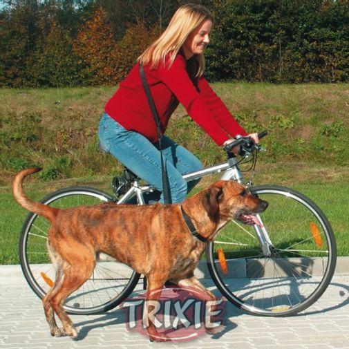 Trixie_Perro_Bicicleta_1282_h