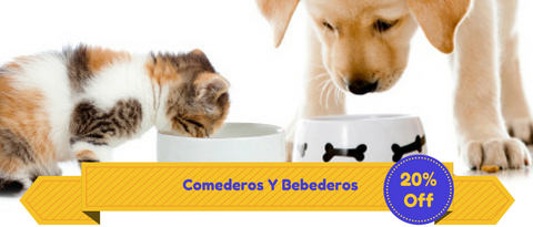 Banner 3x2 Dr. zoo