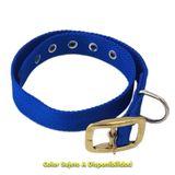 Collar-De-Polipropileno-Especial-Con-Hebilla-Reforzada