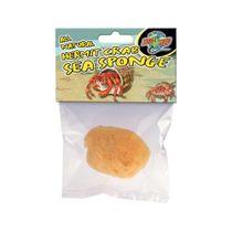 Esponjas-Minerales-Para-Cangrejos-Hermitaños