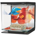Pecera-Marina-Betta-Kit-Sun-Swirl-