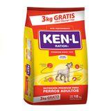 Ken-L-Perro-Adulto