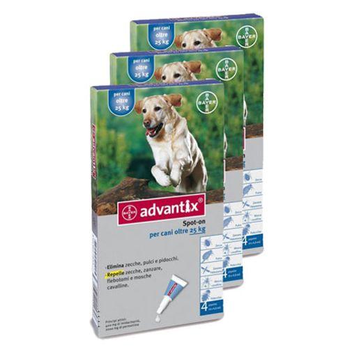 Pack-x3-Advantix-Perros-Grandes