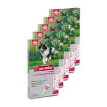 Pack-x5-Advantix-Perros-Medianos