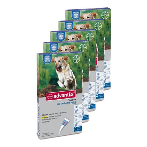 Pack-x5-Advantix-Perros-Grandes