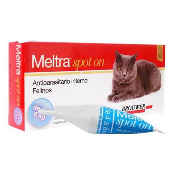 Aniparasitario-Interno-Gato-Meltra®-Spot-On--1Pipeta-