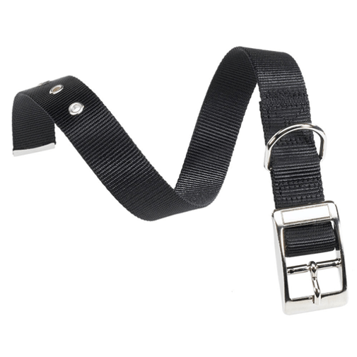 Collar-Club-Negro