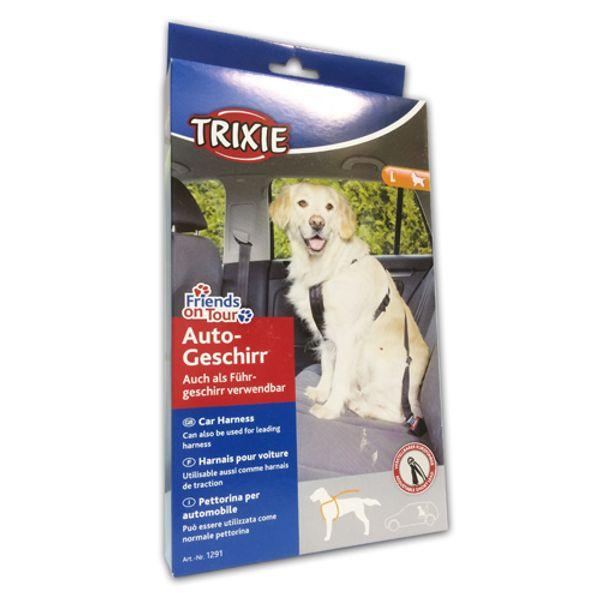 Trixie-Arnes-con-cinturon-de-Seguridad-