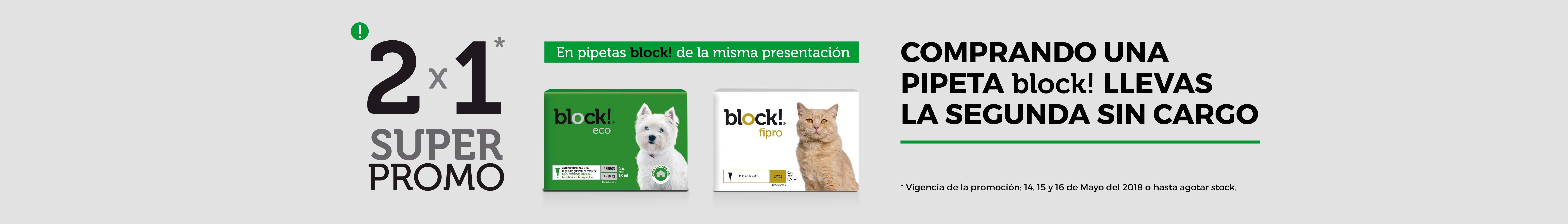 Block 2x1
