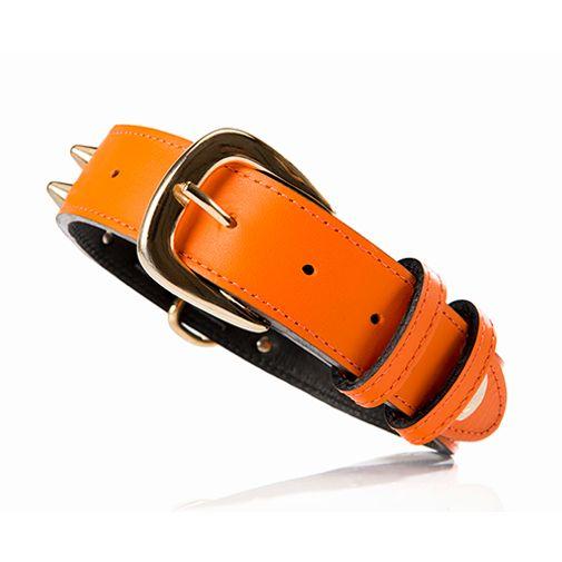 Collar-Chaco-Ancho-Naranja-Grande