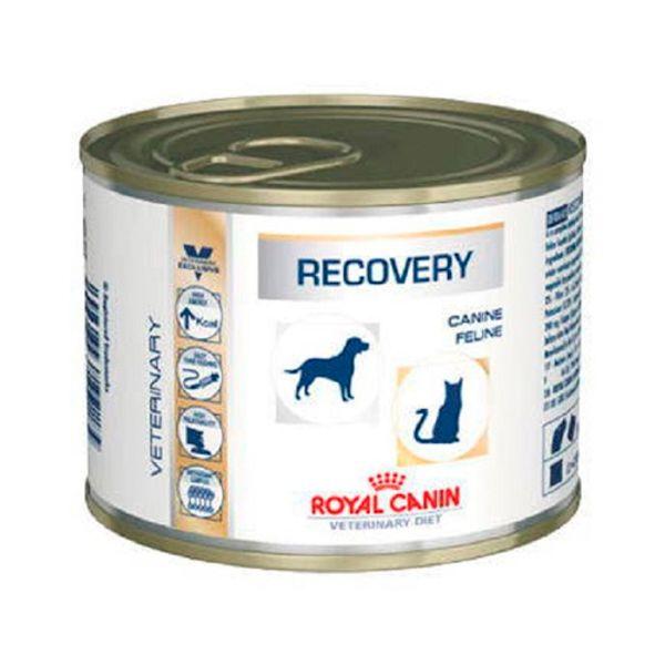 Lata-Royal-Canin-Recovery-Dog-Cat