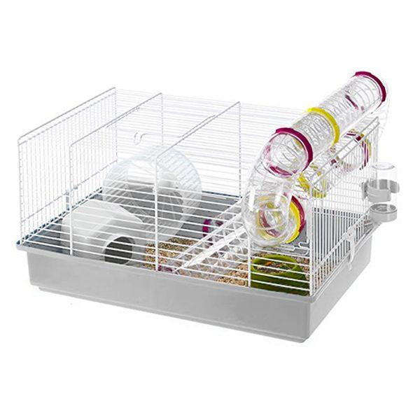 Hamstera-Paula-Blanca