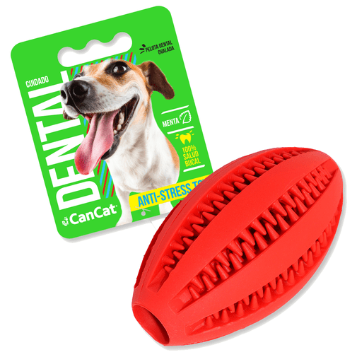 Dental-Rugby