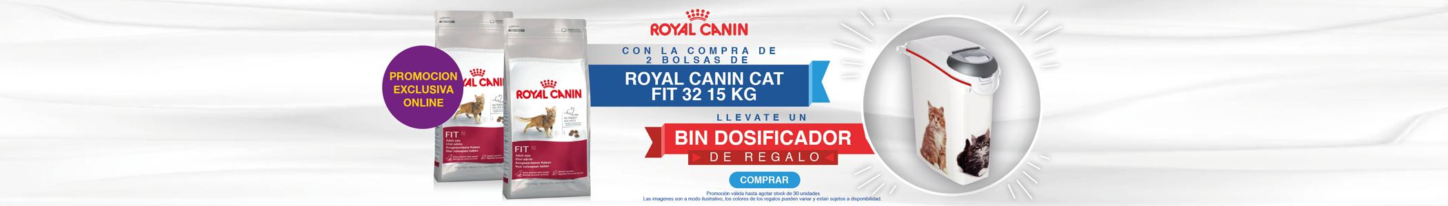 RC - Bin Gato