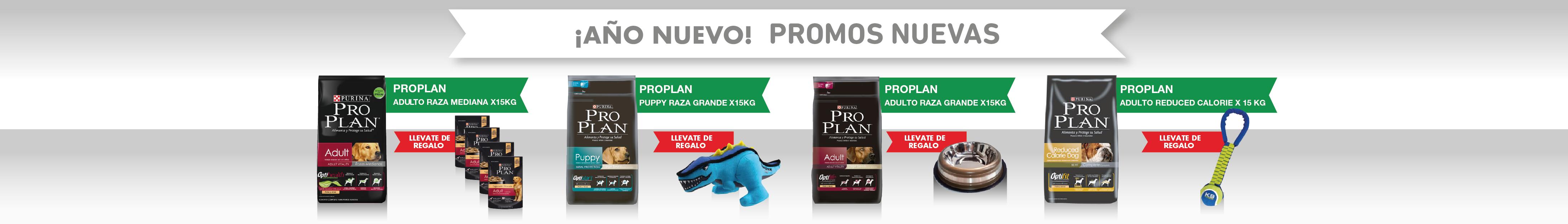 PPlan+Regalo