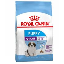 RC-Giant-Puppy
