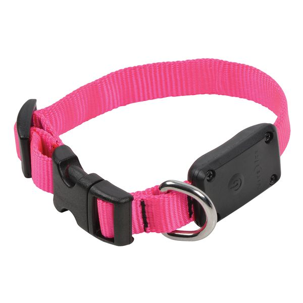 Collar-Nite-Ize-MoteDawg-Neon-Rosa-Extra-Chico