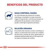 Alimento-Royal-Canin-para-Gatos-Castrados-Young-Female-3.5-Kg