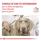 Lata-Royal-Canin-Gastrointestinal-Low-Fat-para-Perro-200-Gr