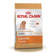 Alimento-Royal-Canin-para-Perro-Poodle-33-Junior-1-Kg