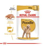 Pouch-Royal-Canin-Poodle-85-Gr