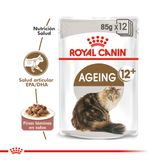 Royal-Canin-Catpouch-Ageing-12--85-Gr