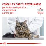 Alimento-Royal-Canin-CatVet-Satiety-Feline-15-Kg