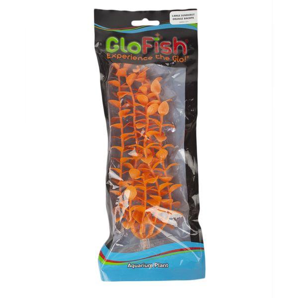 Planta-P.-Glo-Tetra-Bacopa-Naranja