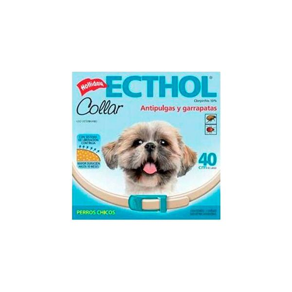Collar-Ecthol-para-Perro-Chico