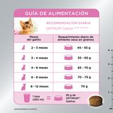 Alimento-Optimum-Kitten-1kg