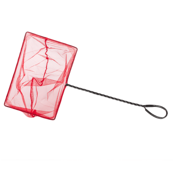 Red-Boyu-Profesional-Nº8