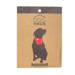 Bandana-Doghaus-Estampada