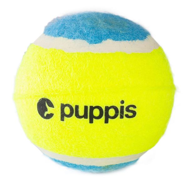 Pelota-Puppis-Tennis