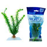 Planta-Tetra-Waterwonders-Anacharis