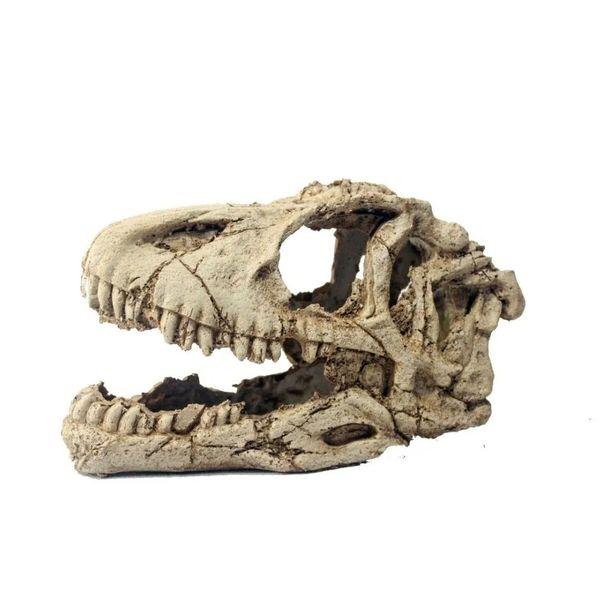 Craneo-de-Tiranosaurius-Rex
