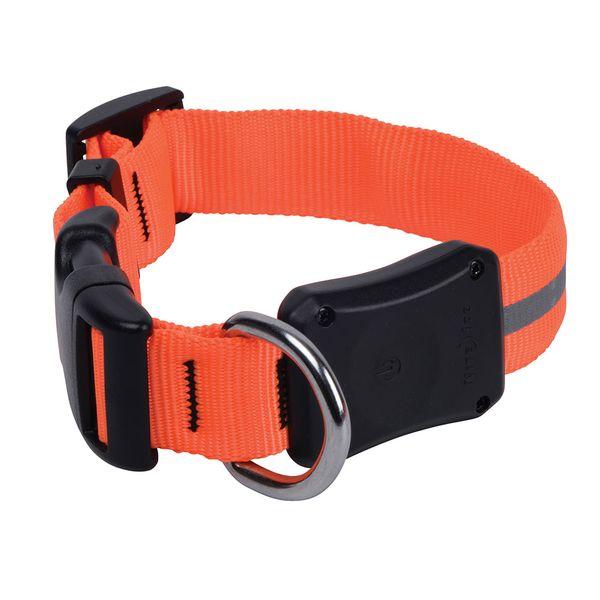 Collar-Nite-Ize-NiteDawg-Led-Naranja-Chico