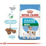 Alimento-Royal-Canin-Mini-Starter-para-Madre-y-Cachorros-1-Kg-foto-2.jpg