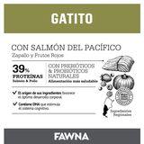Placa-Fawna-Gatitos_Mesa-de-trabajo-1-copia-7