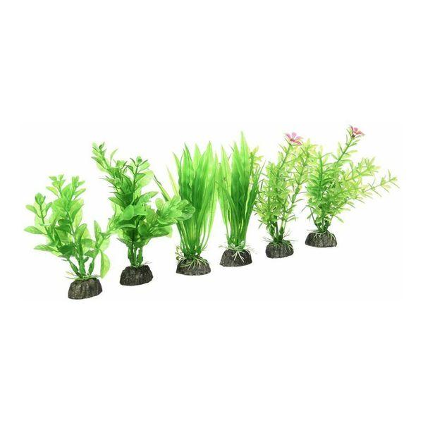 Aqua-Plants-Pennplax-x6-10-cm-251150.jpg