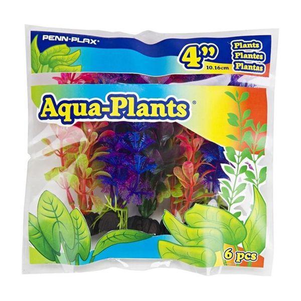 Aqua-Plants-Pennplax-Pack-10-cm-251151.jpg